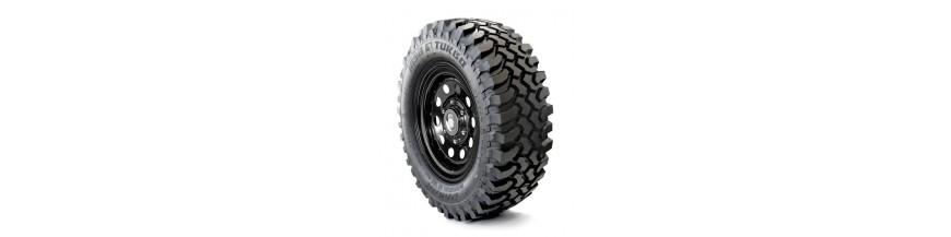 Routier / Remorque utilitaire / Camion
